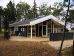Ferienhaus in Skagen - Hulsig