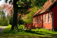 Ferienhaus in Almindingen