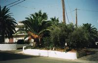 Holiday home in Chania - Galatas - Kreta
