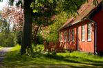 Se sommerhuset i Almindingen